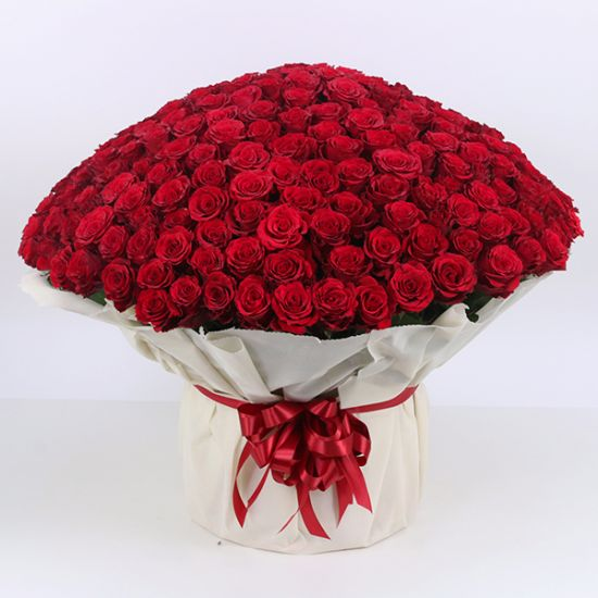 500 red roses hand Bouquet From JuneFlowers.com