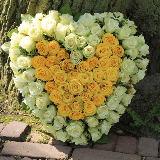 heart shape white and yellow roses