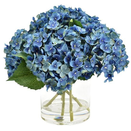 Blue Hydrangea in Cyclinder Vase
