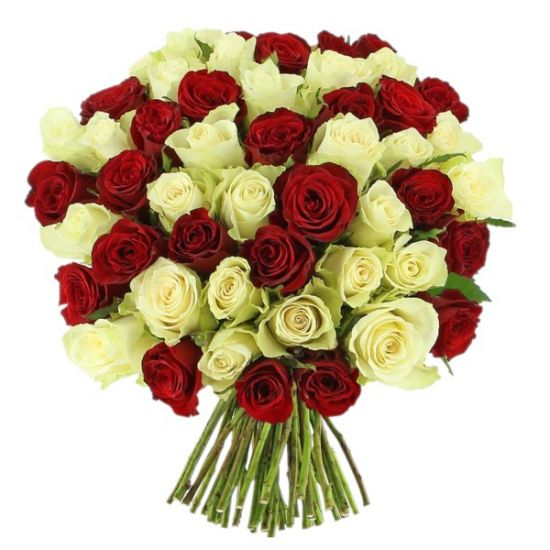 50 Red and White Roses with Hand Tied Bouquet