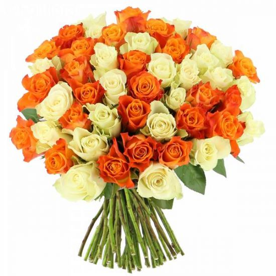 Bouquet of 50 White and Orange Roses with Hand Tied