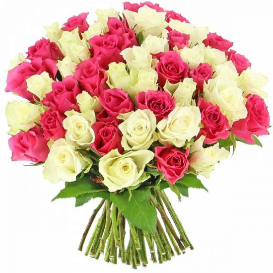 Exotic pink and white colour Hand Bunch Rose Bouquet from JuneFlowers.com