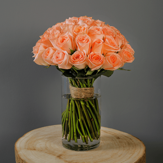 peach rose in glass vase
