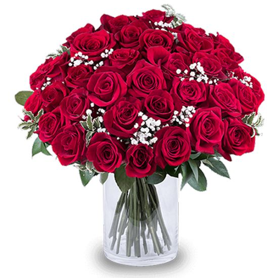 Romance of red roses in a cylindrical vase from JuneFlowers.com