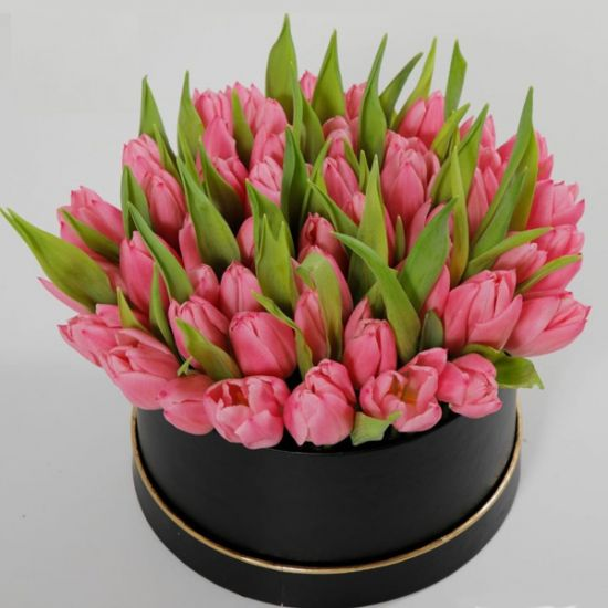 tulips in a round box